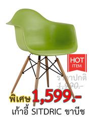 เก้าอี้ SITDRIC ขาบีช